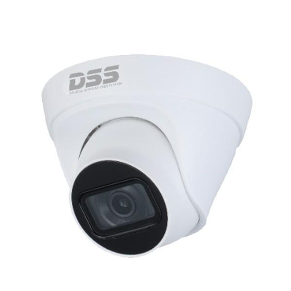 Camera IP Dahua DS2431TDIP-S2