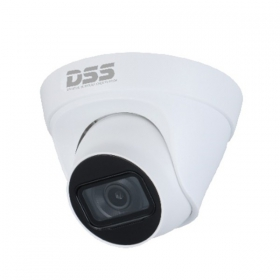Camera IP Dahua DS2431TDIP-S2